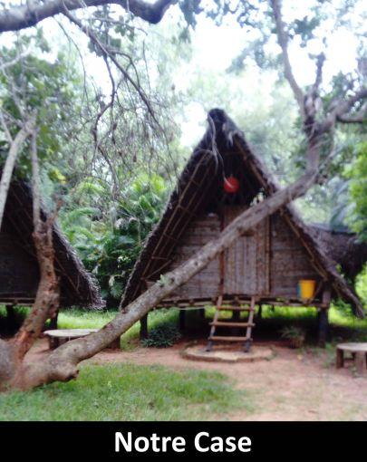 Auroville-1 (2)
