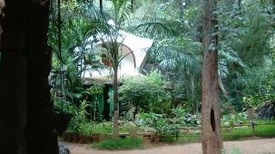 Auroville-1 (4)