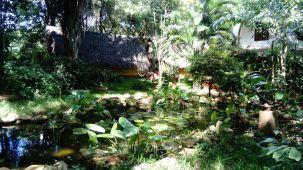 Auroville-1 (5)