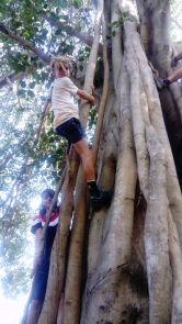 Auroville-6 (6)